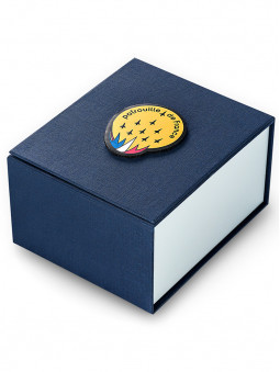 Écrin de la montre chrono Patrouille de France 668513